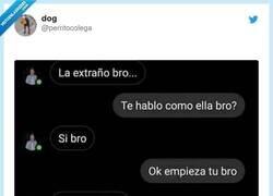 Enlace a Lo has clavado, por @perritocolega