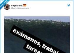 Enlace a No aprenderemos nunca, por @cayetaanaromero