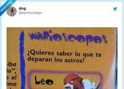 Enlace a El horóscopo que necesitamos, por @perritocolega