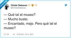 Enlace a Los bustos, mi parte preferida de los museos, por @ChisteSebaceo