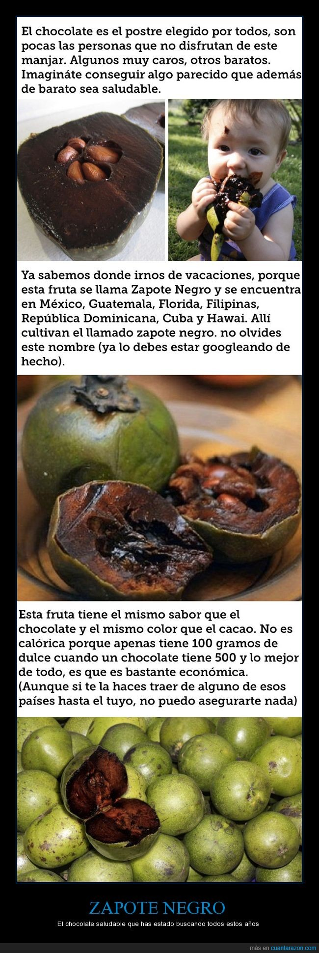 chocolate negro,fruta,zapote negro